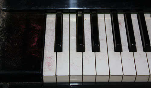 鍵盤が粉っぽくなっている <虫>